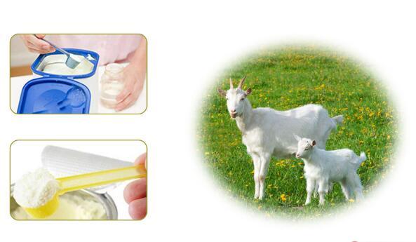 蓝河羊奶粉
