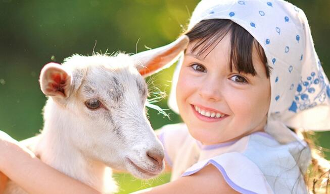 婴幼儿配方羊奶粉